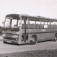 Carters of Litcham. Ford Elite Express II.